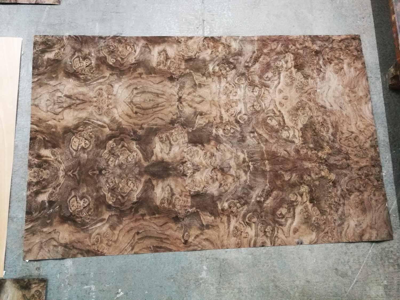 walnut burl veneer leyout
